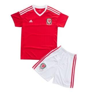 Maillot Pays De Galles Enfant Domicile Euro 2016